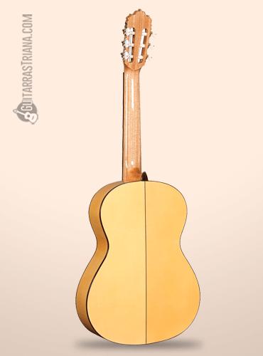fondo de la guitarra flamenca alhambra 5f