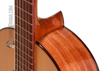 guitarra-bros-b10-cuerdas