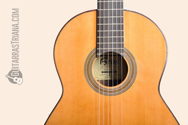 guitarra-bros-b40-boca