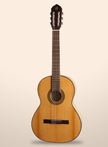 guitarra-bros-b5f