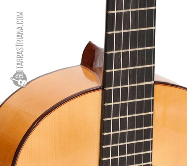 guitarra-flamenco-bros-b20f-tapa