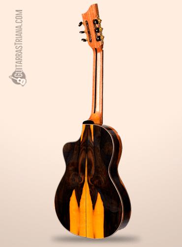 guitarra bros intiluna parte posterior