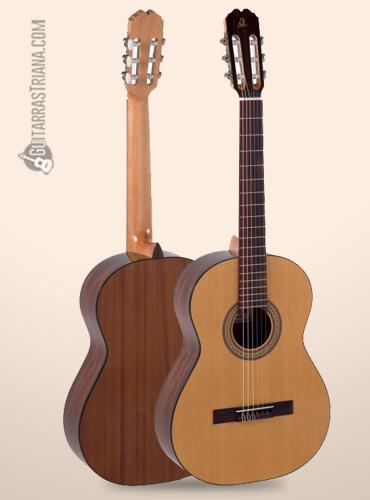 fondo de la guitarra clásica admira juanita