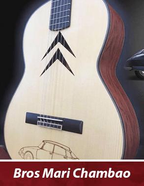 guitarra con personalización de la boca con motivos de la marca citroen