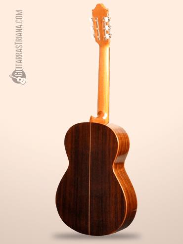 Guitarra Camps M-1 detras