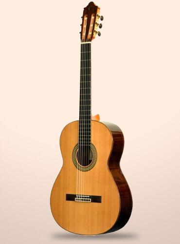 guitarra camps CE600