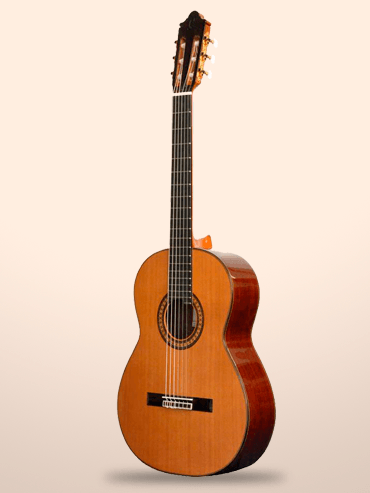 Guitarra Camps m10