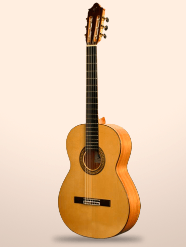 Guitarra Camps m5