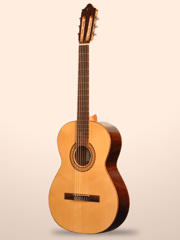Guitarra Camps SP-6-E
