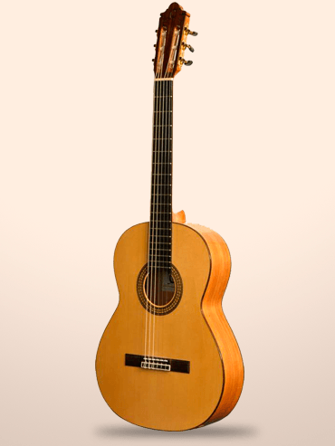 Guitarra Camps CE500