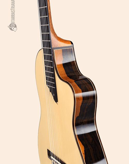 perfil de la guitarra f bros intiluna
