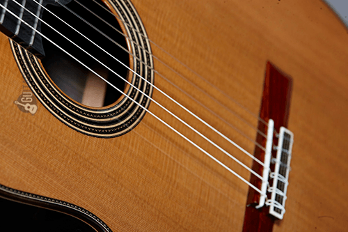 tapa y roseta de la guitarra clásica linea profesional – guitarras alhambra