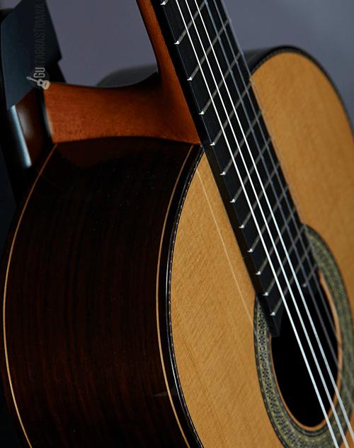 perfiles profesionales de la guitarra vilaplana serie nt