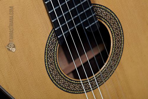 tapa y roseta de la guitarra alhambra mengual y margarit NT