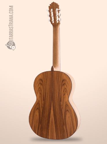 fondo de pau ferro de la guitarra manuel rodriguez C12