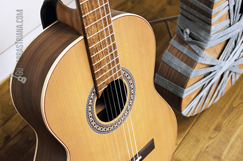 tapa y roseta de la guitarra MR C11