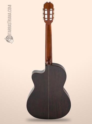 fondo de la guitarra clásica admira virtuoso cutaway