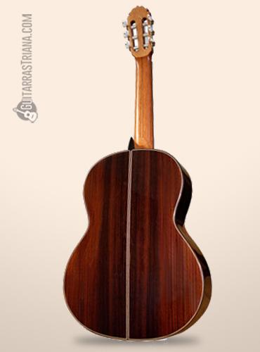 fondo de palosanto de la guitarra amalio burguet 1a