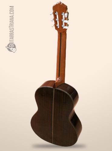 fondo de palosanto de la guitarra burguet 2DV