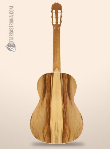 fondo-guitarra-clasica-raimundo-105