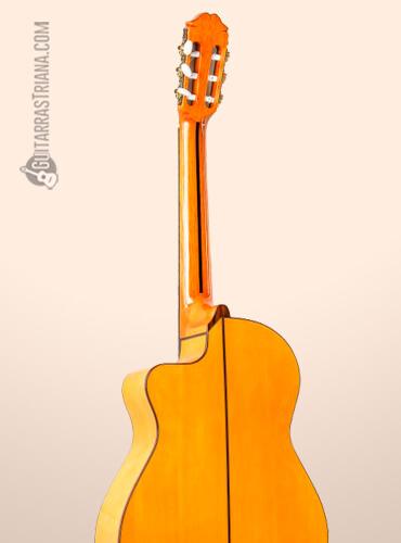fondo-guitarra-raimundo-646E