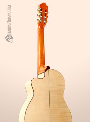 fondo-guitarra-raimundo-modelo-630e