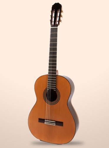 guitarra-raimundo-129-cocobolo