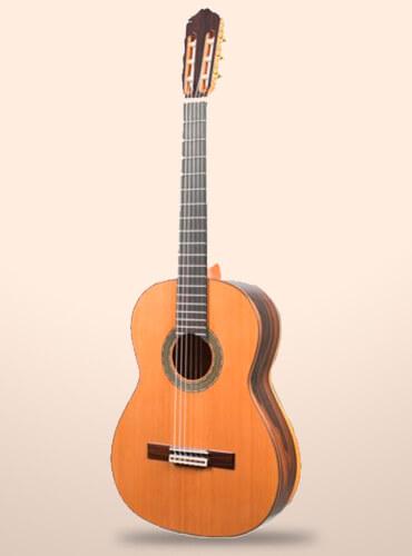 guitarra-raimundo-131-ziricote