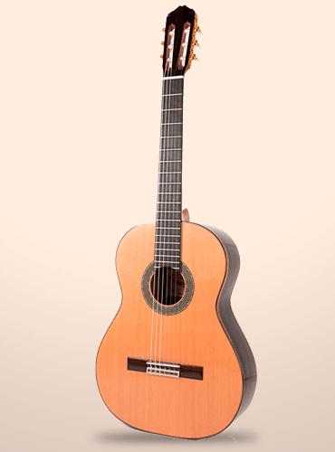 guitarra raimundo 131 ziricote