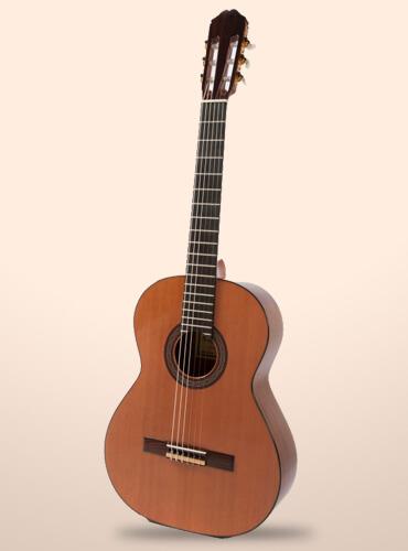 guitarra-raimundo-136