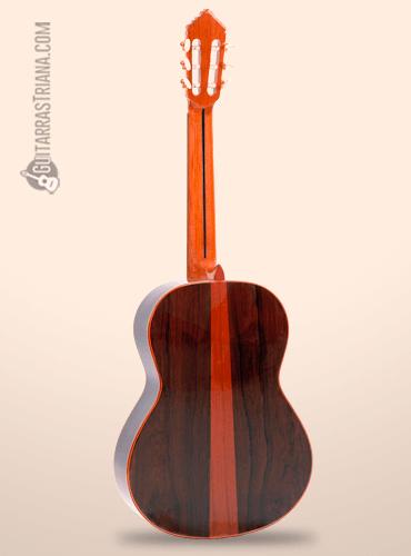 fondo de la guitarra alhambra premier pro madagascar
